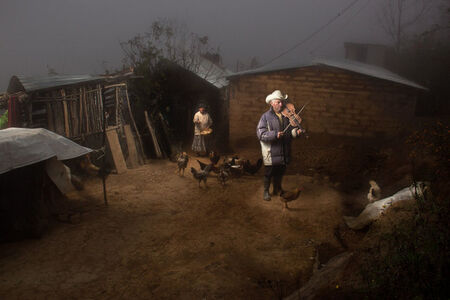Family from the Mist I