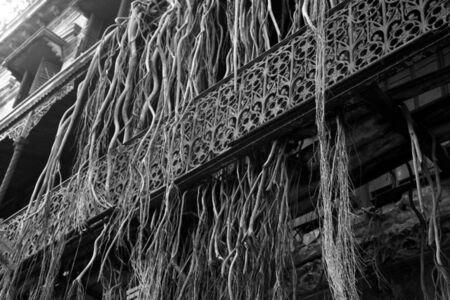 'Verandah railing', Bengali mansion, North Calcutta