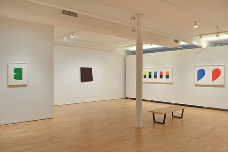 Ellsworth Kelly: Selected Works