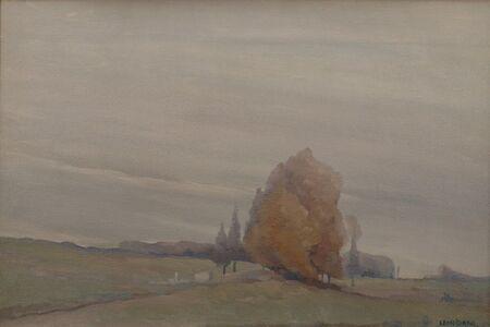 Gray Poplars