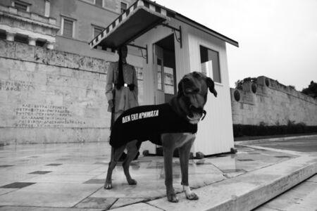 Los Perros Atenienses (detalle)