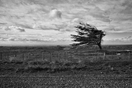 Terra del Fuego - Vìa Panam Series