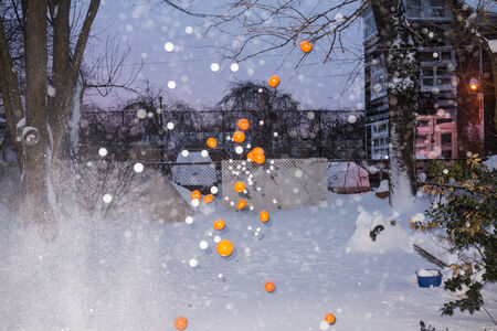 More Snow III: (Oranges, Clementines, Dice, Ping Pong Balls, Eggs, Small Basketballs)
