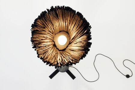 Pressed Wood Black Floor Light