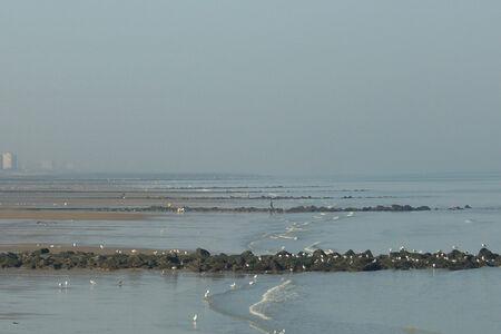 Untitled Landscape (Ostende)