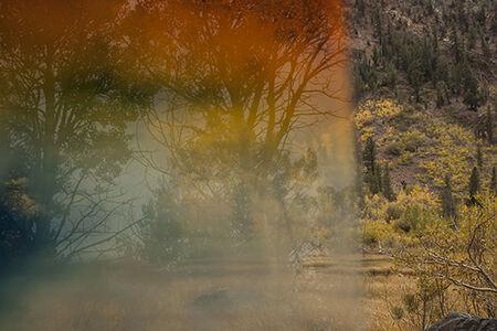 """Lundy Canyon 2014, Perceptions #2"""