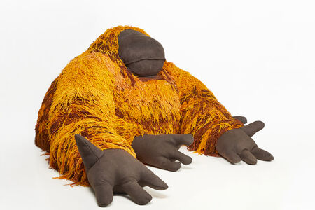 'Yelda' Orangutan