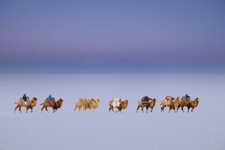"""The Caravan Of The Dawn"" [Uvs Province, Mongolia]"