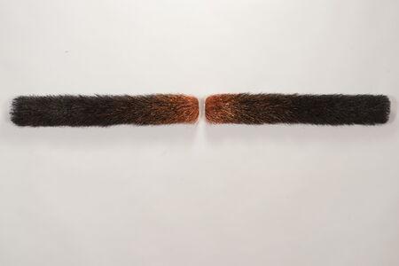 Fire Stick