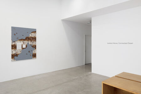 Liu Shiyuan: Isolated Above, Connected Down