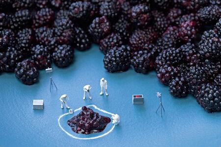 Blackberry C.S.I