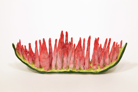 Watermelon Decay