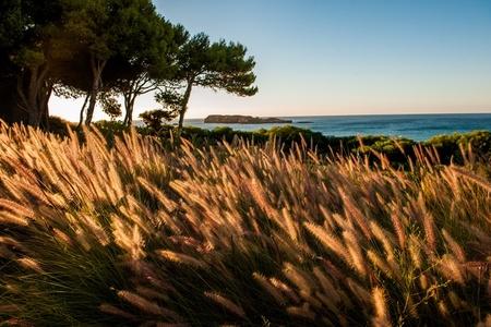 Algarve I