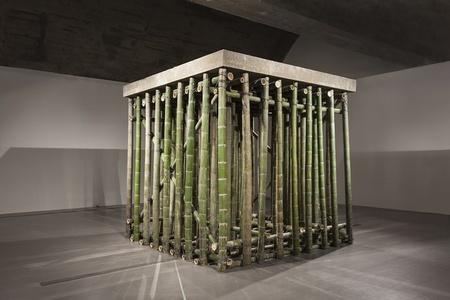 Xiao Yu: Cement Floor