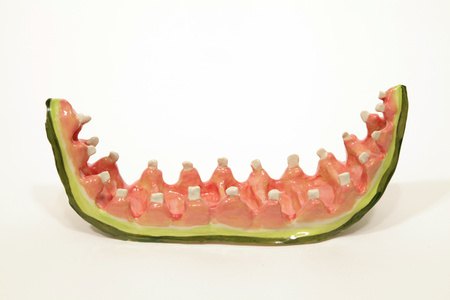 Watermelon Rind with Teeth 2