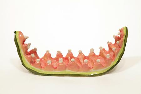 Watermelon Rind with Teeth 2
