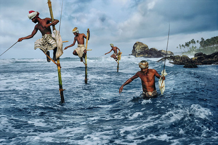 Stilt fishermen, Weligama, South Coast, Sri Lanka