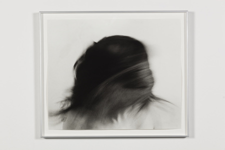 Untitled (Hair)