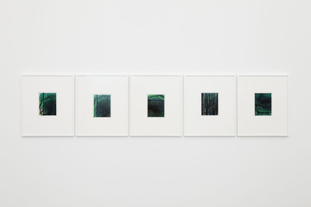 Untitled (Hybrids, Suite of Five)