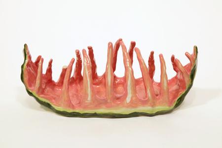 Watermelon Ribs 2