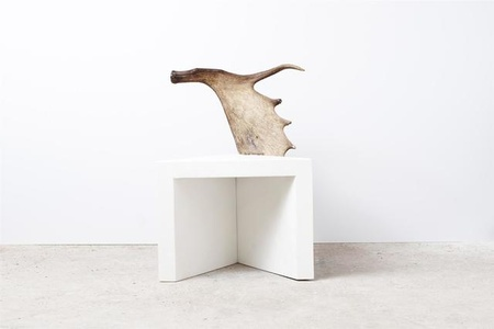 Stag Stool