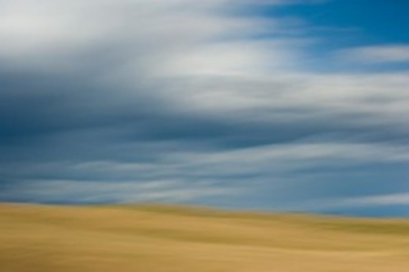 Fields of Grass and Clouds, Table Mesa, California