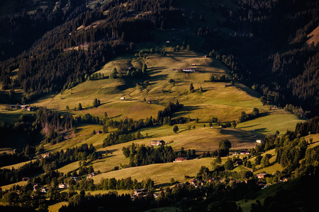 The Alps, 2010