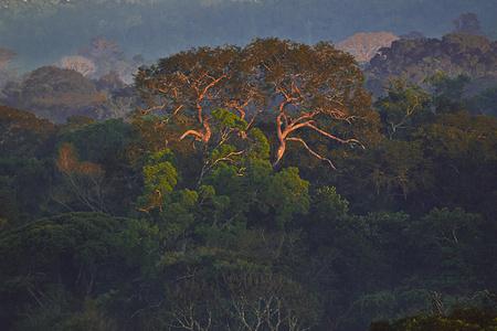 """""""Parque Cristalino""""Alta Floresta, MT"""