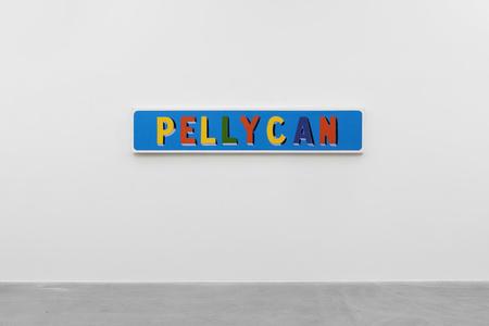 PELLYCAN