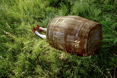 Dorothy (Barrel Series)