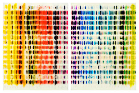 Spectrum Chart - Warm Colors vs. Cool Colors (Diptych)