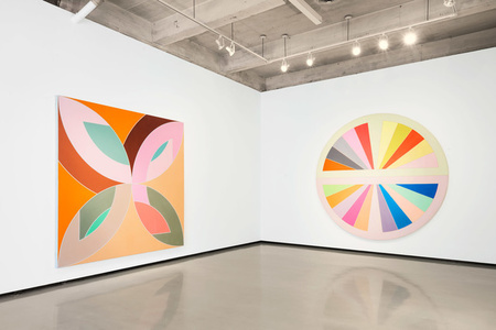 Frank Stella: Shape as Form