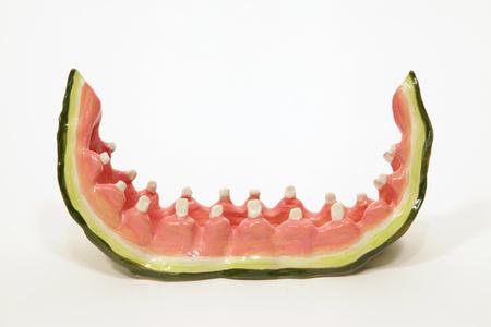 Watermelon Rind with Teeth 1