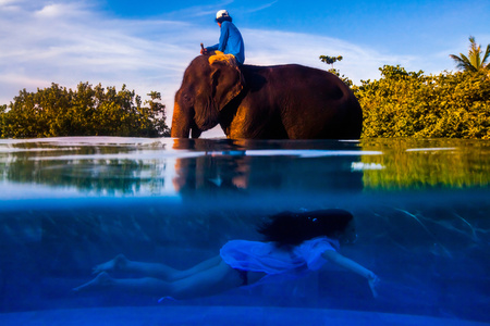 Cultural Bliss, A model swims underwater past an elephant and a mahout at a private home in Phuket, Thailand