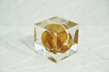 [acrylic bulb #8]