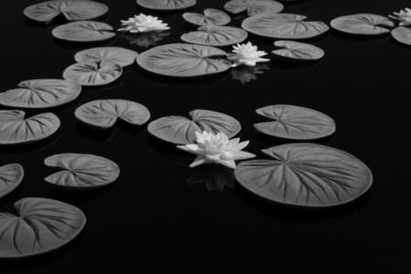 Pond 400