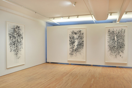 Julie Mehretu: Myriads, Only By Dark