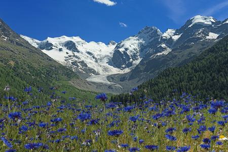 Gletscher Blau