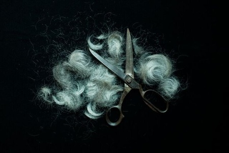 Scissors and Hair - ALIVE series,