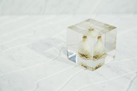 [acrylic bulb #1]