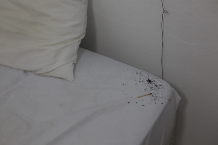 Dirty Bed, Chapter V