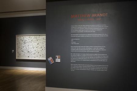 Matthew Brandt: Sticky/Dusty/Wet