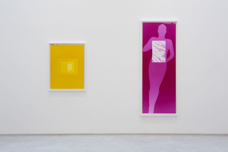 David Benjamin Sherry | Pink Genesis