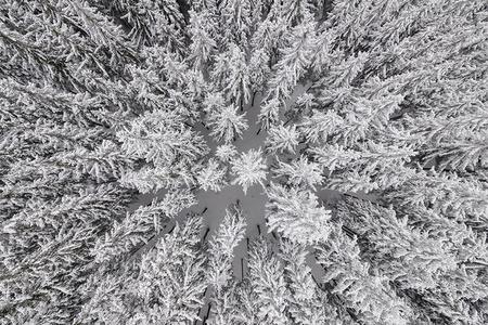 Depth of Winter #32