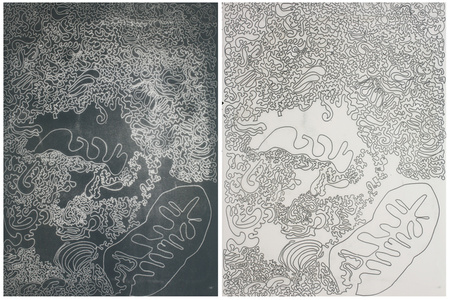 Nag and Nagaina Diptych
