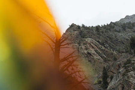 """""""Lundy Canyon 2014, Reflections #3"""""""