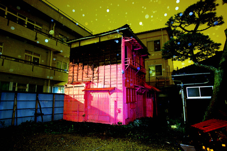 "Pink House, from the series ""Canary"""