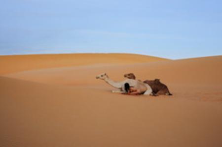 Sahara No. 1