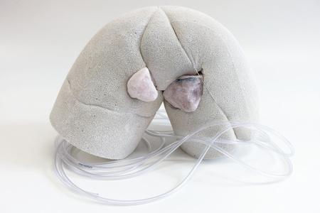 Insulation (quartz eyes)