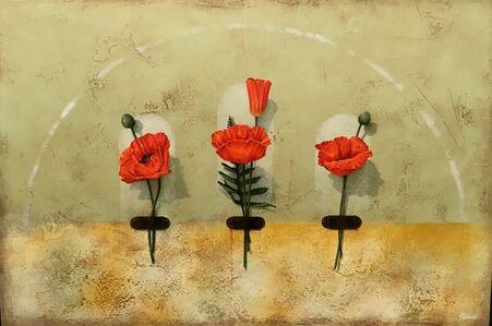 Poppy Wall